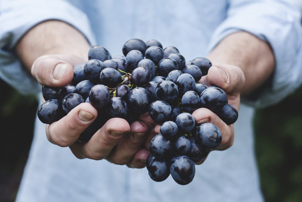 7 Anti Aging Foods -grapes